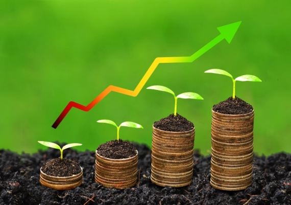 growth-coins-570.jpg